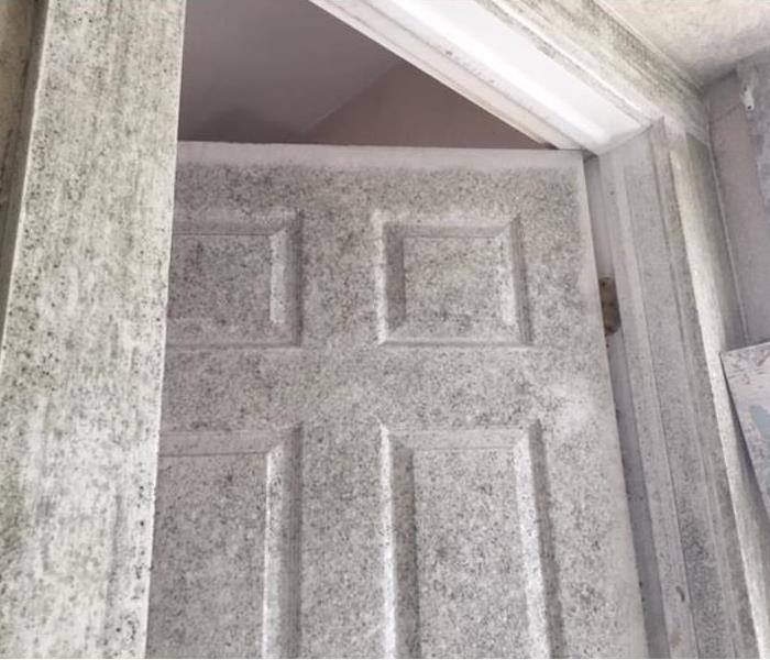 mold covered door and walls