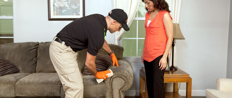 Waterbury, CT carpet upholstery cleaning